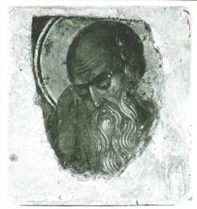 Head of a bearded saint
