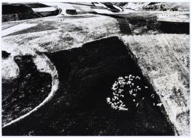 Untitled (Landscape) from the series Paesaggi
