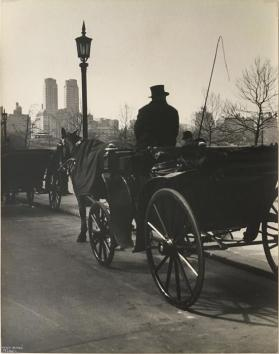 Carriage and Driver, Central Park