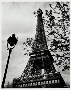 Tour Eiffel avec bronches et lampe (Eiffel Tower with Branches and Lamp)