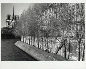 People sitting along Seine, view of Notre Dame from rear